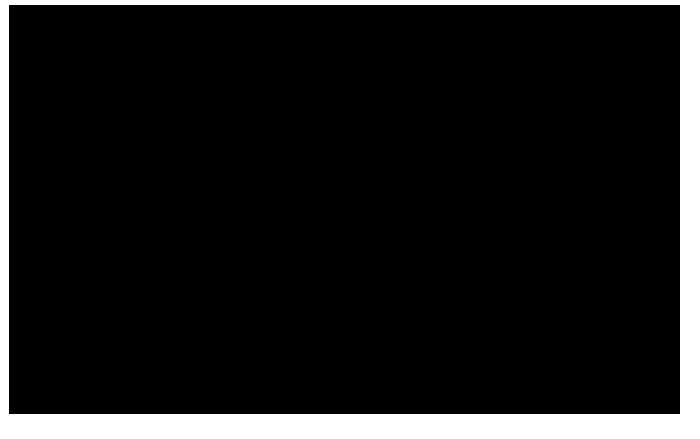 غزل حافظ 17